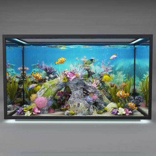 modern aquarium  3d model max obj mtl 3ds fbx stl abc 1